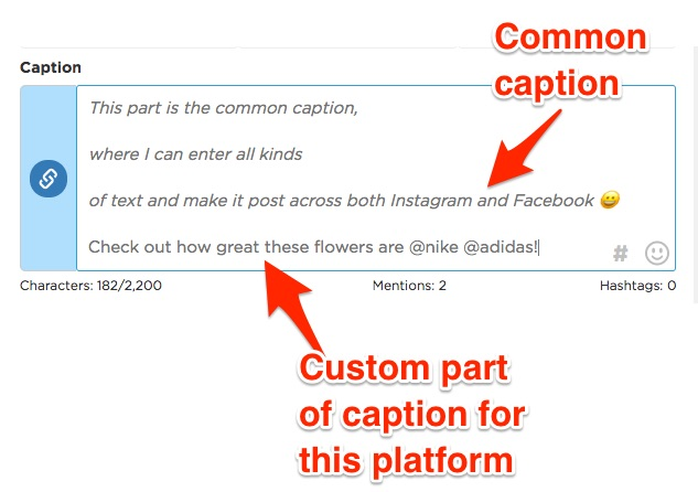 Caption Example 1