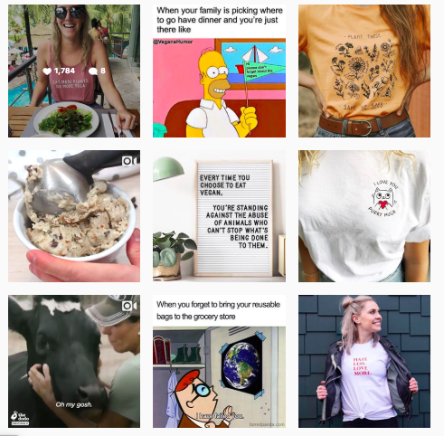 Wholesome Culture's social media content strategy includes empowering quotes, images of animals, Vegan recipes and tips those interested in adopting a Vegan and eco-friendly lifestyle.