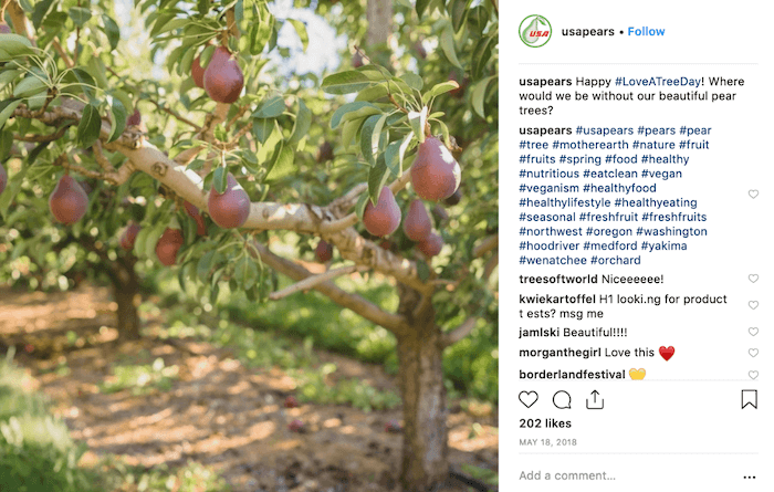 May Social Media Holiday Campaign Ideas - Love a Tree Day - Sked Social