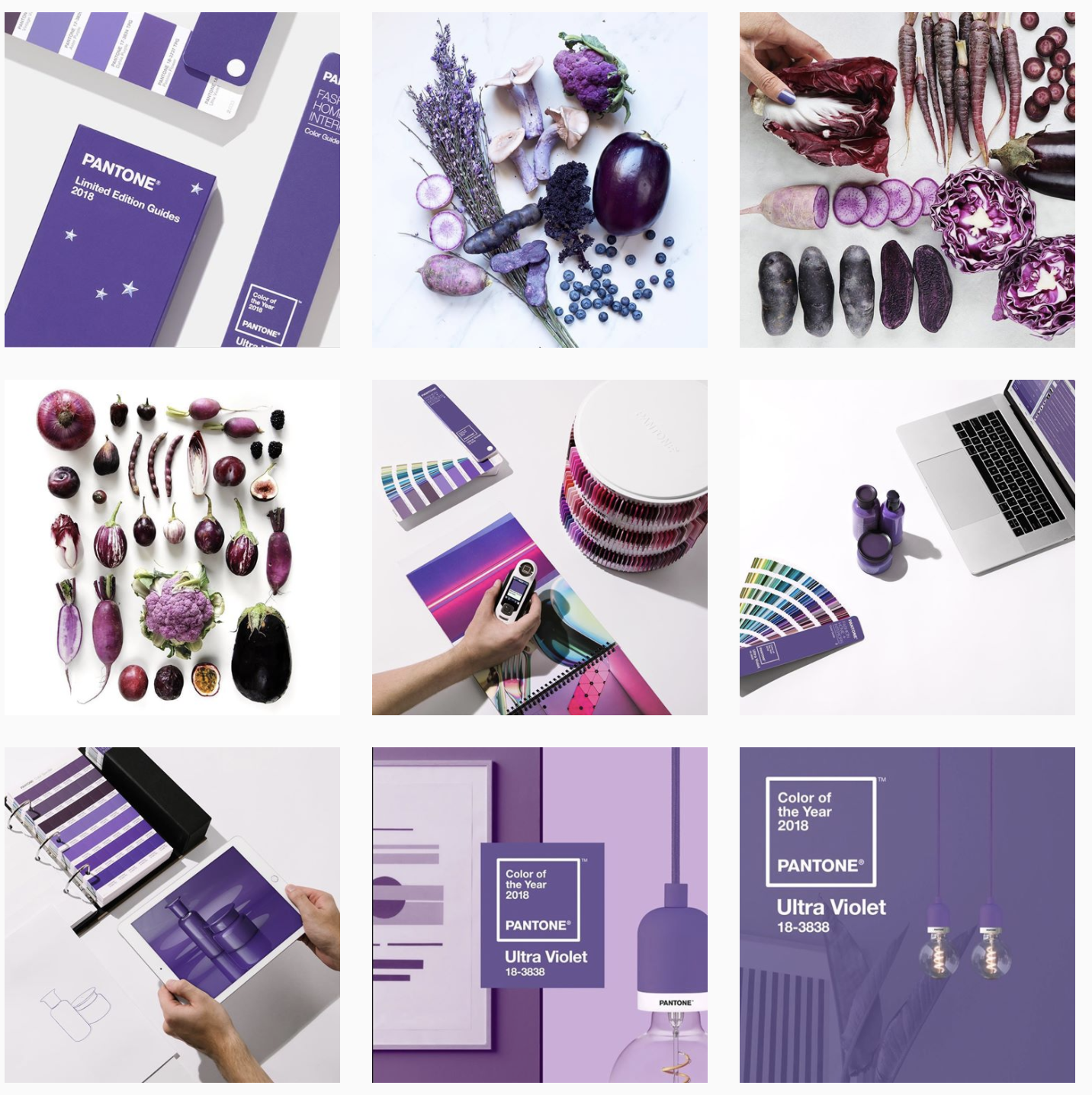 Instagram Feed Ideas: Brand Colors - Schedugram