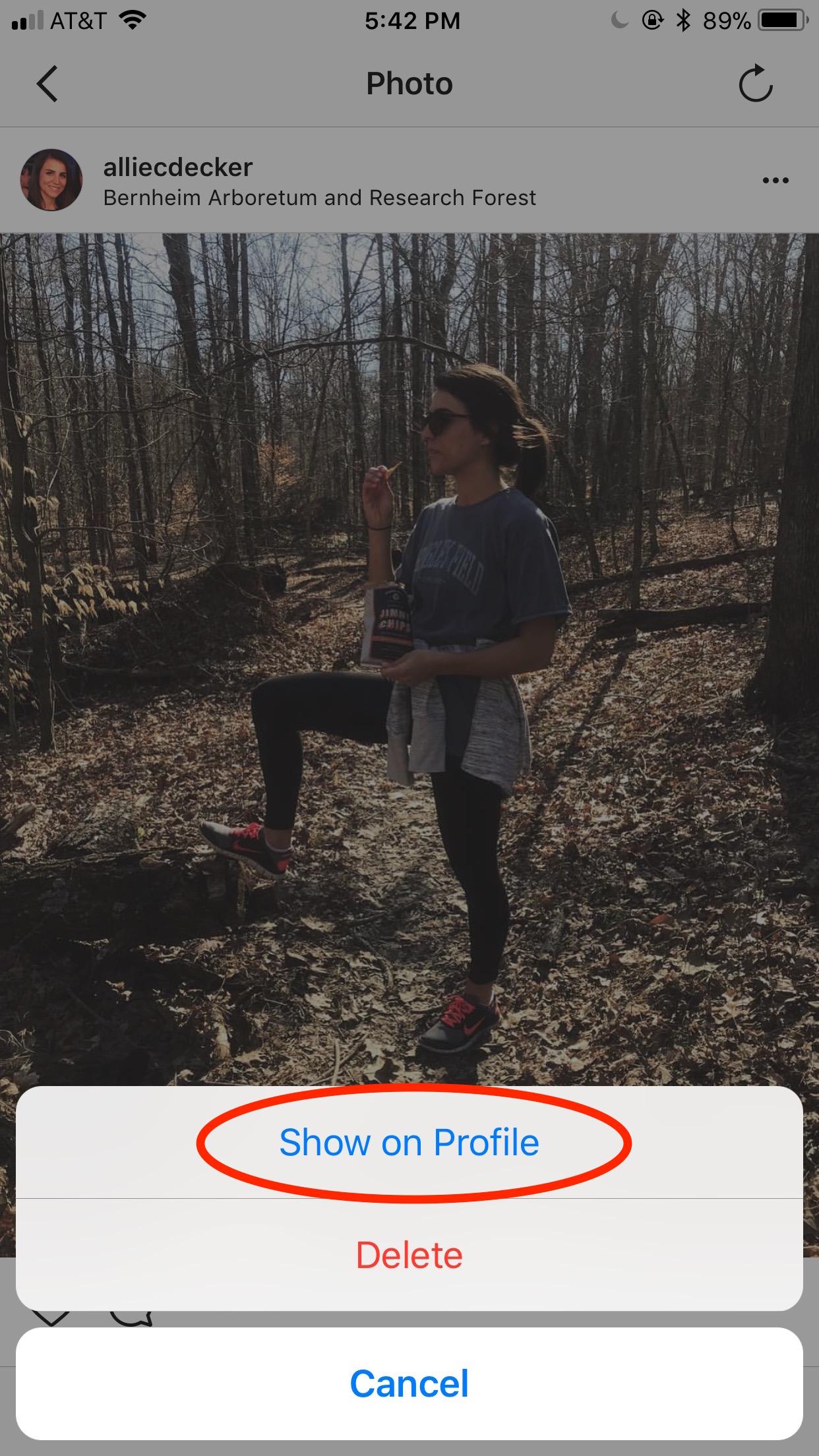 Instagram Archive - Schedugram