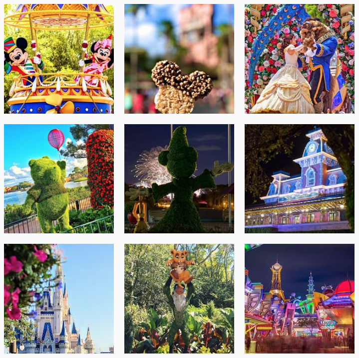how-many-times-a-day-should-i-post-on-instagram-entertainment-and-travel-walt-disney-world-example
